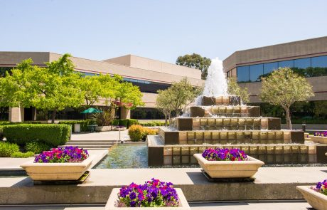 Ground-level photo showing courtyard at Hacienda West, a 208,883 SF Class A office project located in the prestigious Hacienda Business Park in Pleasanton, CA